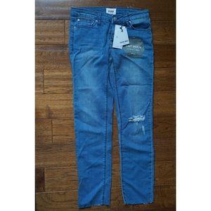 Hudson Cailin Ankle Skinny Knit Denim Jean